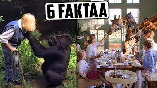 Kirahvihotelli Afrikassa? Gorilla puhuu viittomakieltä? | 6 MIELENKIINTOISTA FAKTAA
