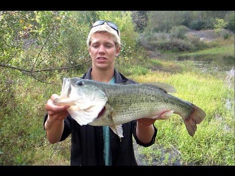 Store bass på jig