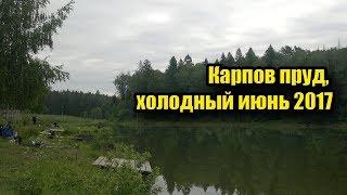 Отчет о рыбалка карпов пруд челябинск