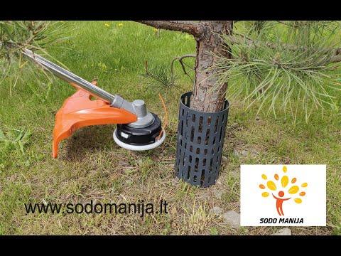 Koku stumbru aizsardzība TREEMEX (10 gab.) tumši pelēka
