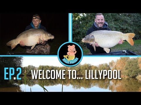 Customer video: France Carp Fishing 2017, Pt 2, Apr 2019