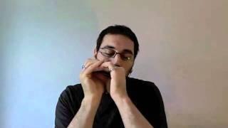 Générique de GoT version harmonica