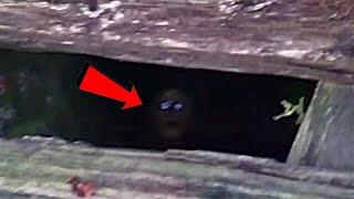В этом списке топ-12 есть таинственные видео самых страшных вещей, когда- либо найденных исследователями, спускающимися в жуткие старые  подвалы. Жуткие и странные звуки всегда звучат страшнее, когда доносятся  из подвала. Страшные