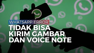 Alami Gangguan, Aplikasi WhatsApp Tidak Bisa Kirim Gambar dan Voice Note