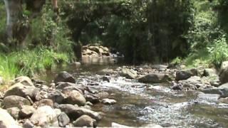preview picture of video 'PUENTE ITURRIGARAY, HUATUSCO VERACRUZ'