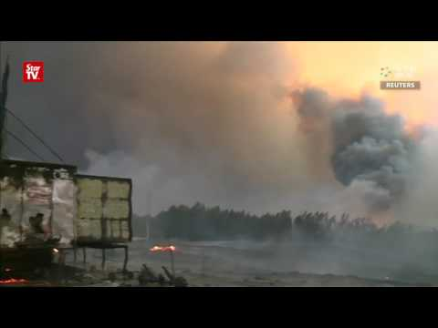 Dozens killed in central Portugal forest fires