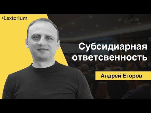 СУБСИДИАРНАЯ ОТВЕТСТВЕННОСТЬ [Андрей Егоров - Лексториум]