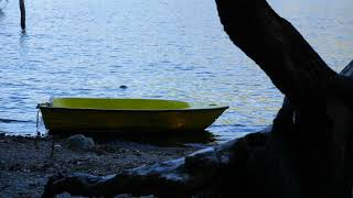 8 Hours Gentle WAVES at the Lake, Waves Lapping at Lakeside, Wave Sounds for Sleep, Relaxing, Study
