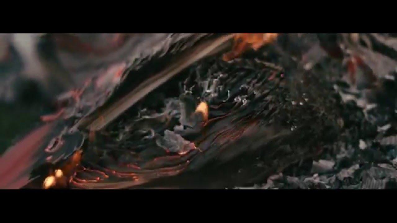 Cinematography Reel 2015