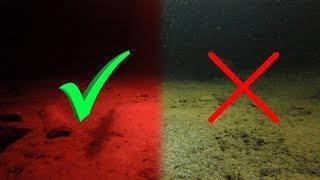 Какая рыба клюет в дождь ночью
