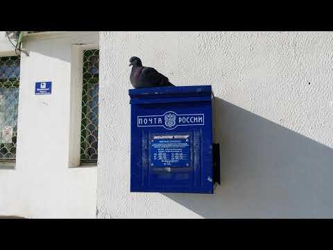 Куда жаловаться на почту России?