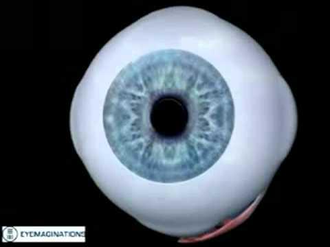 Acuitatea vizuală și metodele de cercetare