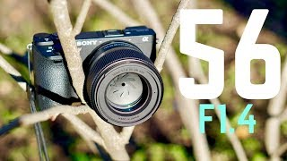 Sigma 56mm F1.4 Lens Review: It's Perfect.