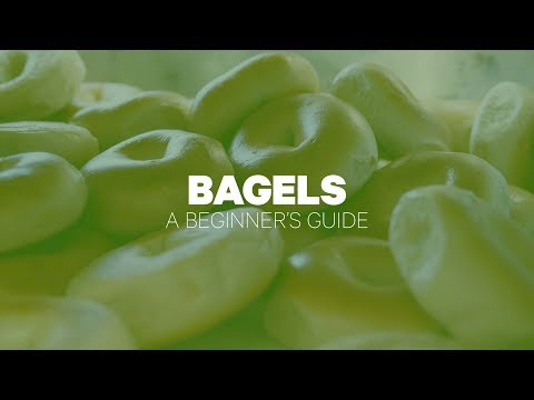 bagels knoxville tn