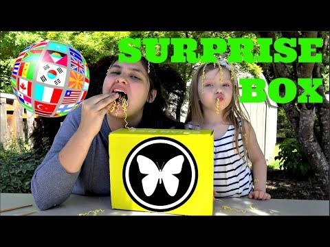 SURPRISE box REVIEW! EsianMall TREAT BOX! Americans TRY foreign FOOD! The TOYTASTIC Sisters