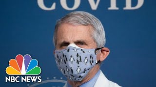 Live: Dr. Fauci Testifies At Senate Hearing On Covid-19 Response | NBC News - Download this Video in MP3, M4A, WEBM, MP4, 3GP