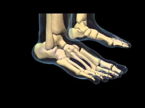 Articulație genunchi creak și dureroase