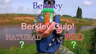 Приманка мотыль berkley powerbait ebpmwb 70шт red