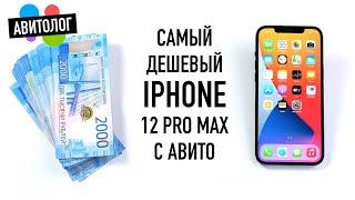 Авитолог: самый дешевый iPhone 12 Pro Max с Авито - обман и страдания