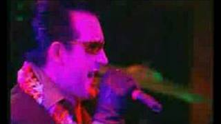 The Damned ~ Democracy?