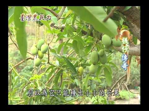 臺灣農民力第33集
