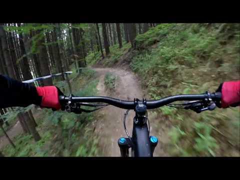 Single Trails Bílá 2019 Medvěd