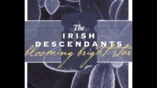 Irish Descendants  - Step it out Mary