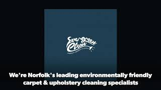 Welcome to Evergreen Clean®
