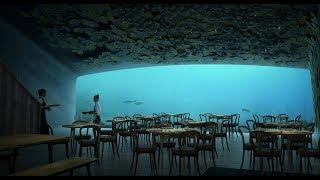 Snøhetta Unveils Designs for Europe's First Underwater Restaurant (4K)
