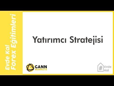 Yatırımcı Stratejisi