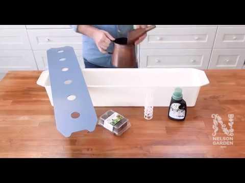 Nelson Garden Harvy hydroponisk startpakke 6 - film på YouTube