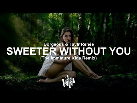 Borgeous & Taylr Renee - Sweeter Without You (The Immature Kids Remix)
