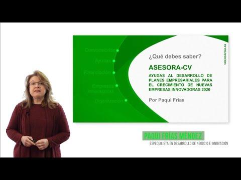 Todo lo que debes saber sobre la AYUDA ASESORA-CV