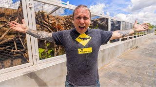 LARGEST REPTILE ZOO IN THE WORLD!! IGUANALAND!!   BRIAN BARCZYK