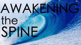 Shala Teaching: Awakening the Spine