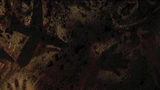Annie Lennox - Lost