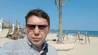 Ядовитые медузы в Аликанте, закрытие пляжей провинции, португальские кораблики