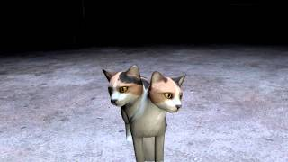 The Cat With Two Heads