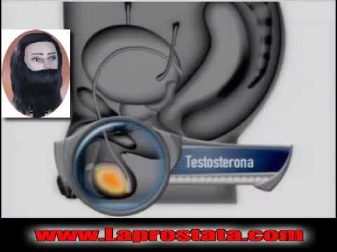 jerzy zięba prostata youtube