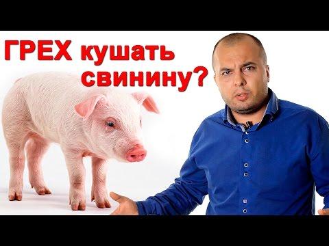 Свинину можно есть христианам в Новом завете? - СтопГРЕХ