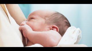 Semana mundial da amamentação destaca a importância do aleitamento materno nos primeiros meses de vida.