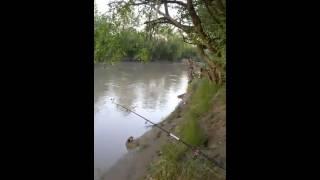 На реке сунжа рыбалка