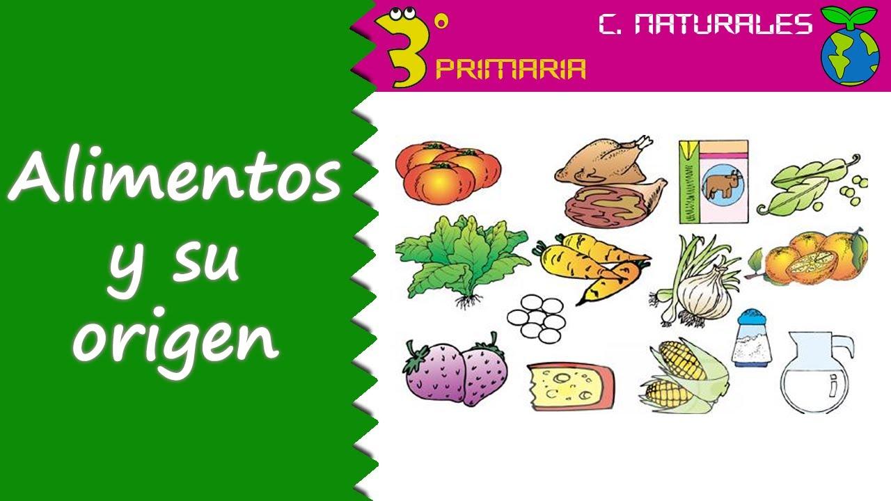 Ciencias de la Naturaleza. 3º Primaria. Tema 4. Los alimentos y su origen