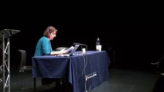 Intermidia Conference II – Advisory board plenary – Ágnes Pethő and Lisa Shaw