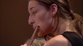 Shostakovich: Symphony No. 9 / Gergiev · Mariinsky Orchestra