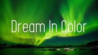 HALIENE - Dream In Color (Lyrics) AMIDY Remix