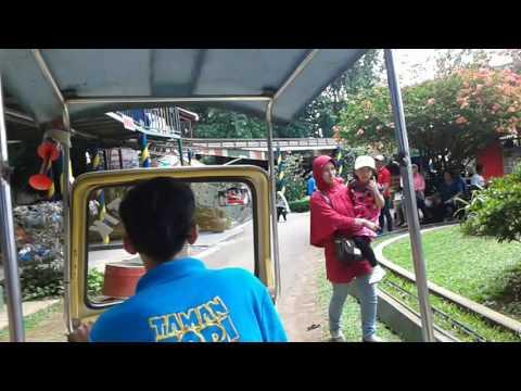 Video wisata anak di taman topi