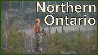 NORTHERN ONTARIO : BIG WOODS BUCKS