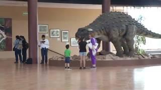 Miles de personas visitaron el Museo del Desierto