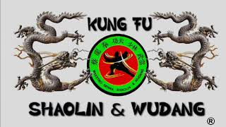 Wudang Kungfu Ji Ben Quan 武当功夫基本拳  Basic Fist Set by ShiFu Paty Lee